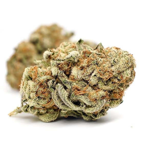 Buy CBD Mango Haze