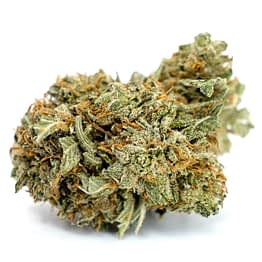 Buy Weed for Sale Online