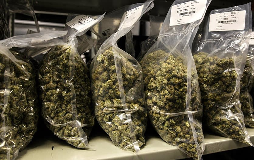 Packages of Marijuana