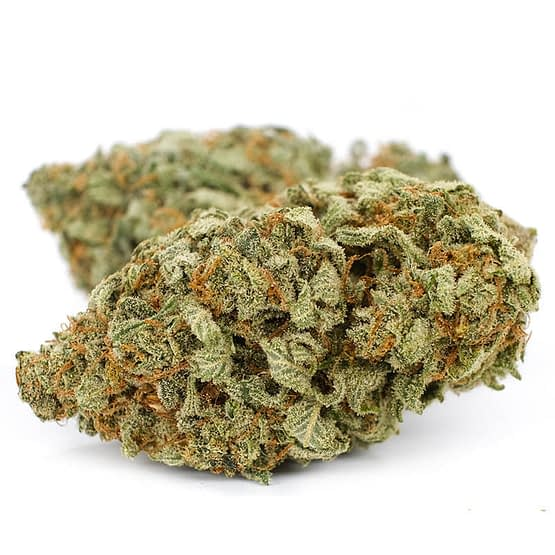 Buy Durban-Poison
