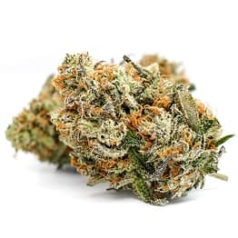 Buy Super Lemon Haze