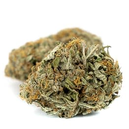 Buy CBD Critical Cure